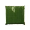 palmgreen